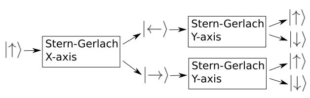Stern-Gerlach-XY